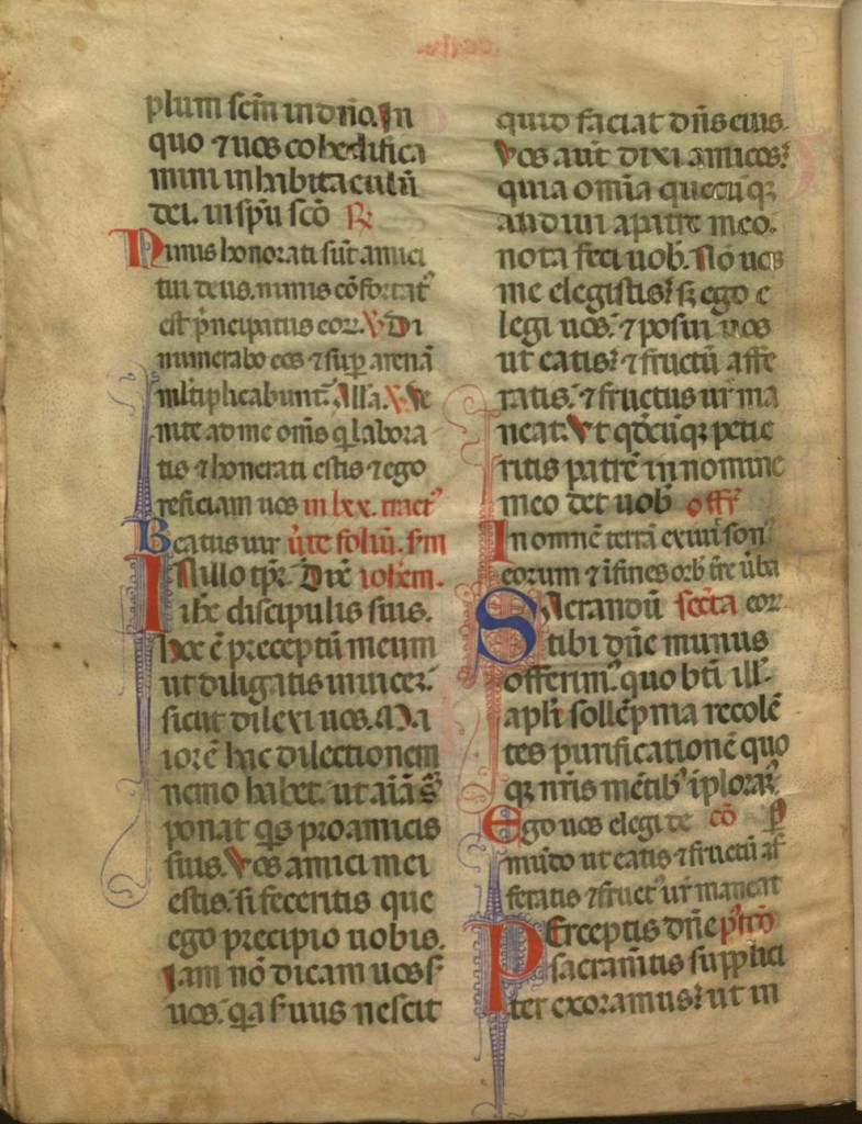 verso of vellum leaf