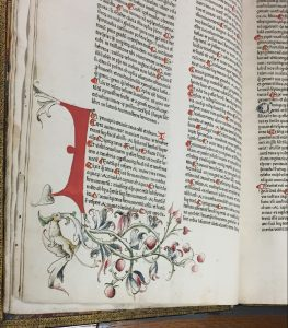 Rubrication and illustration from the Gutenberg Bible, vol. 2. (Scheide Library, Princeton University)