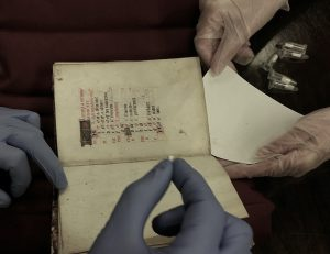 DNA sampling from a book of hours [ca. 1450?], from Special Collections https://search.library.wisc.edu/catalog/999757866502121. Photo by Micaela Sullivan-Fowler.
